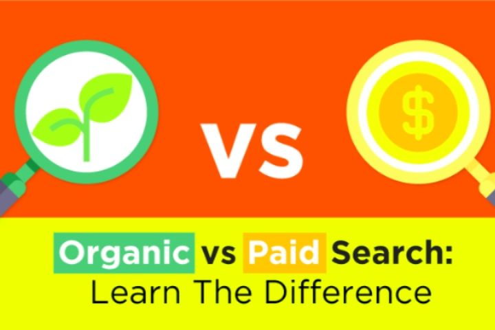 The Difference Between Organic Marketing And Paid Marketing