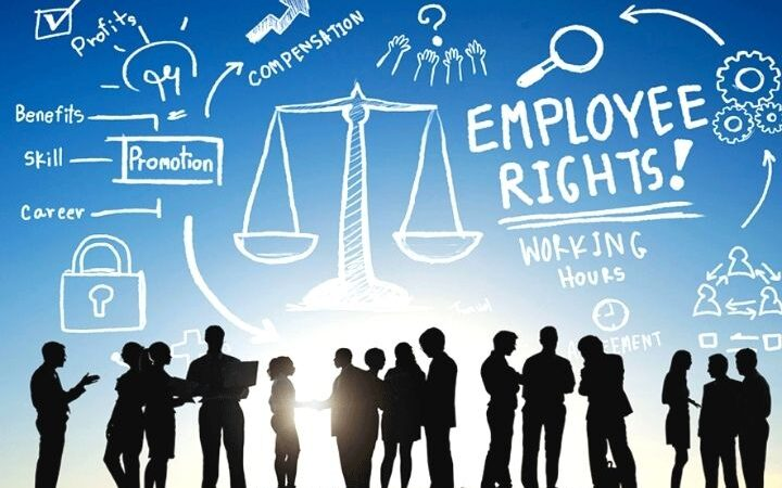 The Basic Facts All Employer's Should Know