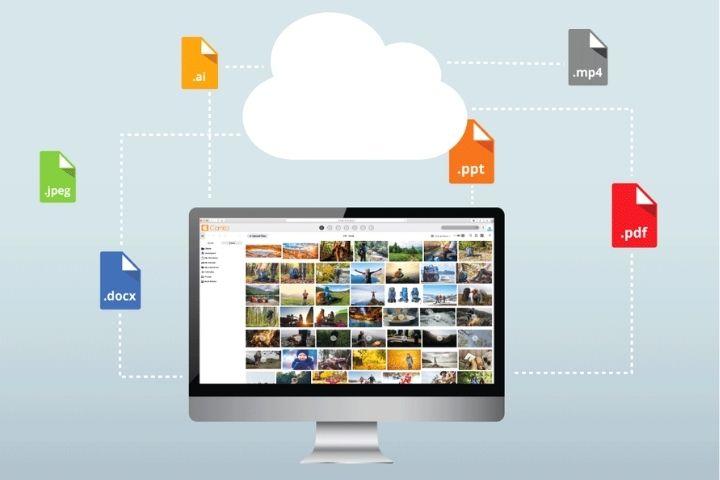 Digital Asset Management Software